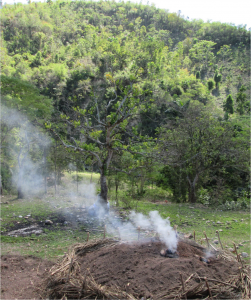 A billow of smoke rises from a charcoal kiln filled with recently cut wood from the hillside behind.