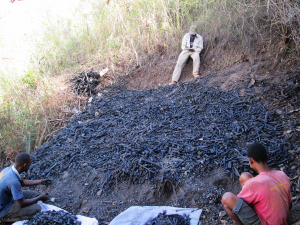 A student from the Fakilte Etnoloji (Deparment of Ethnology) at the University of Haiti interviews charcoal makers on a hillside.